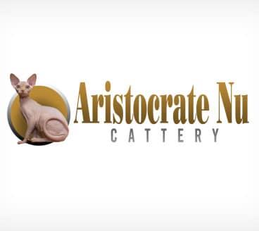 Diseño gráfico de Logotipo AristocrateNu Pamplona Navarra