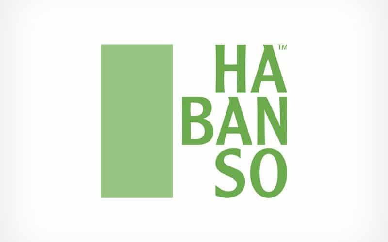 Diseño Gráfico De Logotipo Habanso República Dominicana