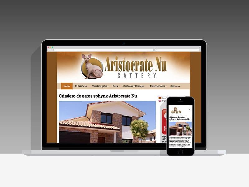 Diseño Página Web AristocrateNu Pamplona Navarra